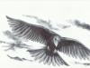 crow-3_0